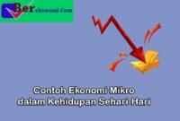 Contoh Permasalahan Ekonomi Mikro